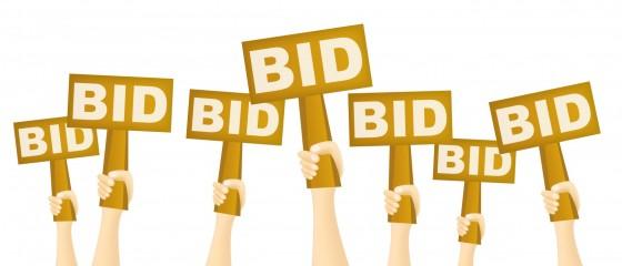 auction (1)-3